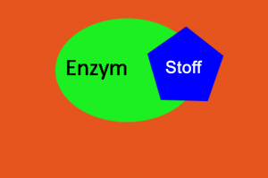 Enzym Rätsel